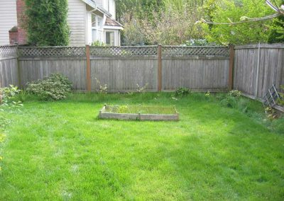 This before photo shows a boring lawn with no interest