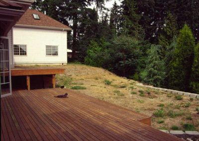 Before: the sloping yard offered a blank slate