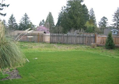 Before the new garden was built, the yard next door was an unused expanse of lawn