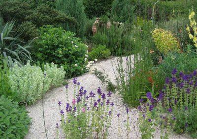 Mediterranean drought tolereant plants year round interest in Seattle